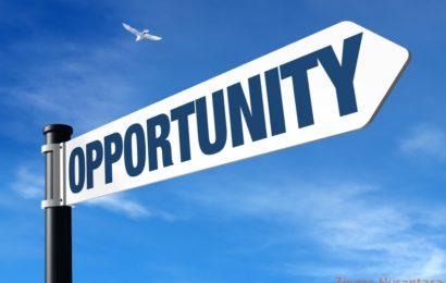 Bisnis Terkini: Bagaimana Peluang Usaha di Tahun 2017 ?